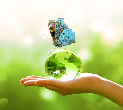 A blue butterfly sits atop a small glass globe held by a hand